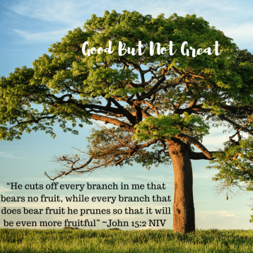"1) ""He cuts off every branch in me that bears no fruit, while every branch that does bear fruit he prunes so that it will be even more fruitful"" ~John 15_2 NIV.png"