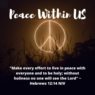 _Make every effort to live in peace with everyone and to be holy; without holiness no one will see the Lord_ _ Hebrews 12_14 NIV